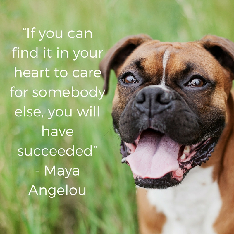 caring is success